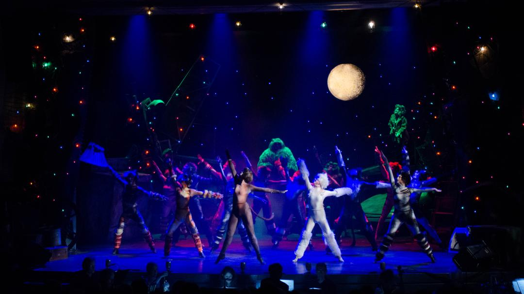 Cats the Musical at Woodstock Town Hall Theatre