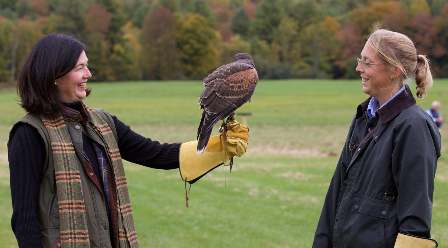 New England Falconry Introductory Session