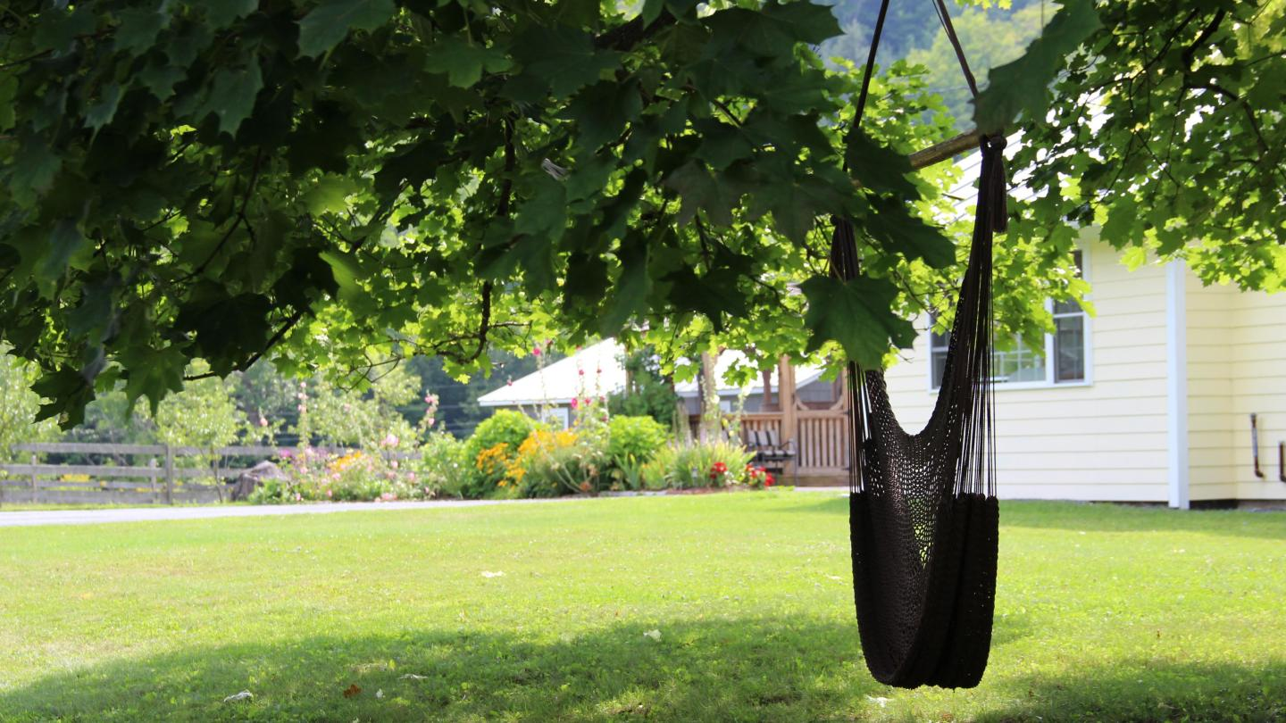 Dana Road House tree swing at Gray Barns Properies