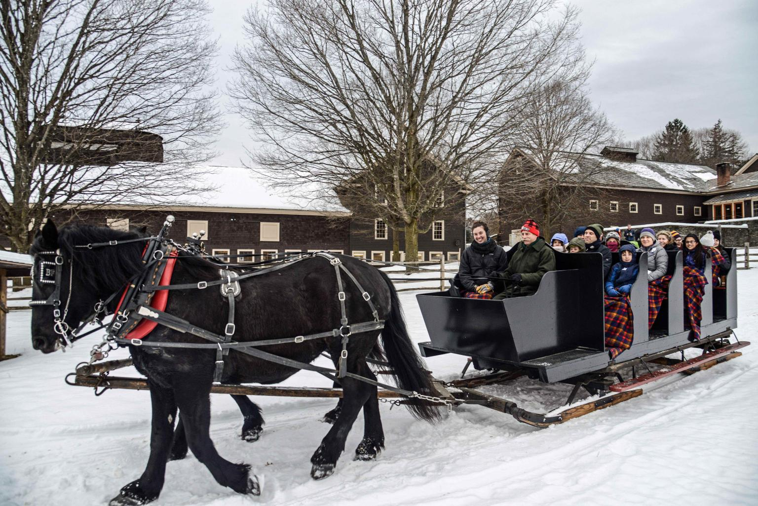 horse-drawn sleigh ride at Billings Farm