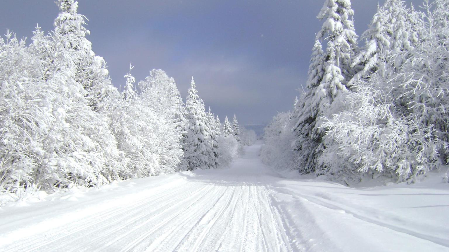 Snowmobile Trails