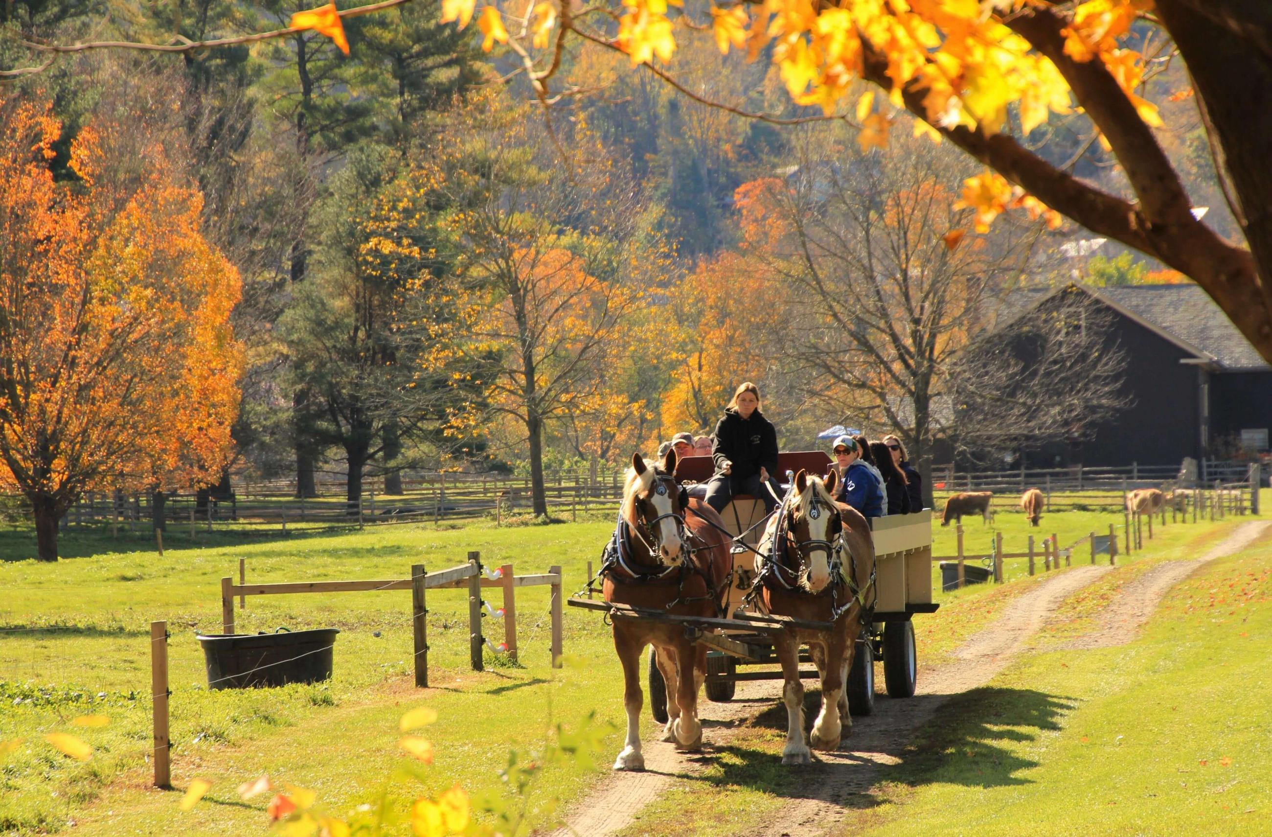 A Photographer S Guide To Perfecting Your Fall Foliage Snaps Woodstock Vt